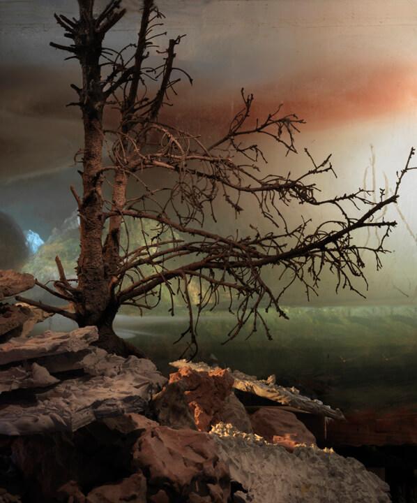 Kim Keever. Картина под водой – лес и холмы